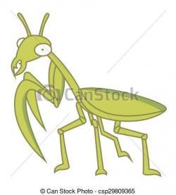 Mantis clipart green bug