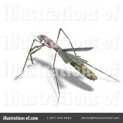 Mantis clipart stick insect
