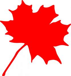 Small clipart maple leaf