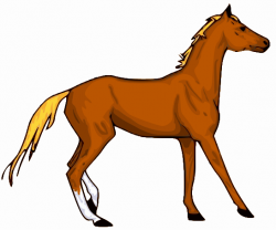 Animl clipart horse