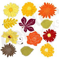 Marigold clipart modern floral
