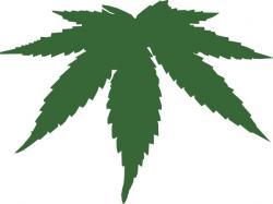 Drawn pot plant reggae