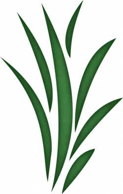 Weed clipart sea grass