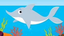 Marine Life clipart baby shark