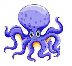 Octopus clipart invertebrate