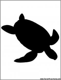 Shaow clipart turtle