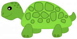 Slow clipart green turtle