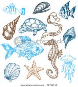 Marine Life clipart marine science