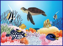 Coral Reef clipart great barrier reef