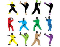 Martial Arts clipart sports clip