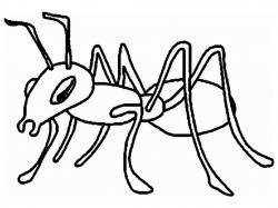 Ants clipart black and white