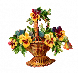 Cosmos clipart flower basket