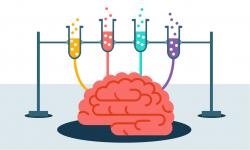 Mind Teaser clipart brain memory