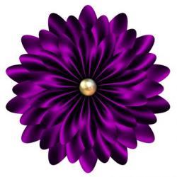 Mauve clipart daisy flower