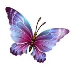 Papillon clipart butterfly fly