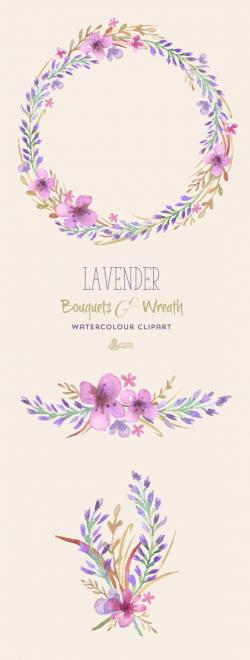 Drawn lavender clip art