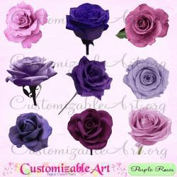 Purple Rose clipart purple flower