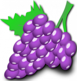 Mauve clipart grape