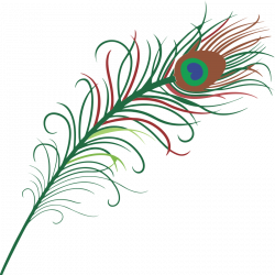 Pen clipart peacock feather