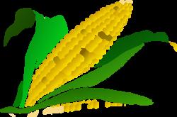 Cornfield clipart corn maze
