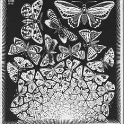 M.c.escher clipart butterfly