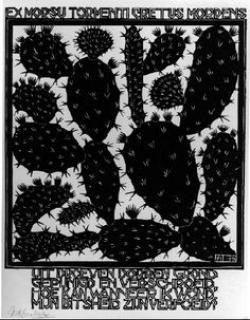 M.c.escher clipart fruit