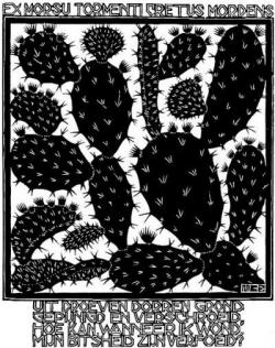 M.c.escher clipart pineapple