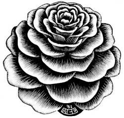 M.c.escher clipart rose