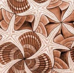 M.c.escher clipart starfish
