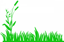 Ground clipart meadow