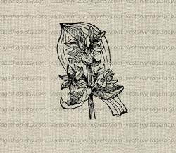 Medicinal clipart victorian