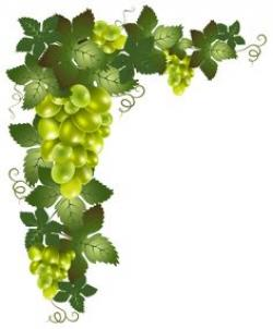 Mediterranean clipart grape leaf