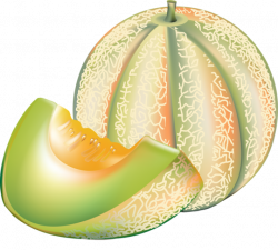 Honey Dew Melon clipart ripe