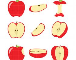 Melon clipart apple slice