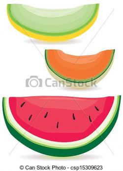 Cantaloupe clipart sliced