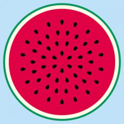 Melon clipart half watermelon