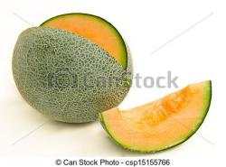 Melon clipart muskmelon