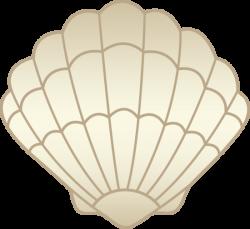 Clams clipart seashell