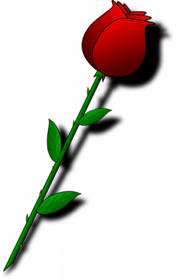 Message clipart valentine rose