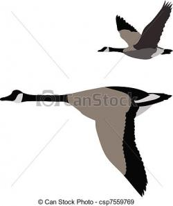 Geese Migration clipart cartoon