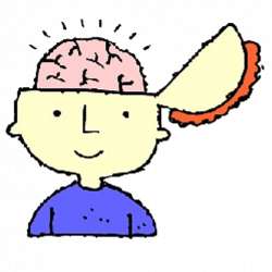 Brains clipart for kid png