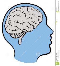 Mind clipart profile
