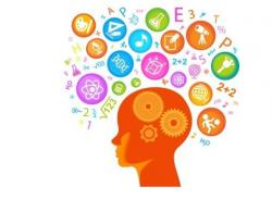 Brains clipart product knowledge