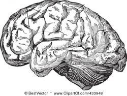 Organs clipart brain