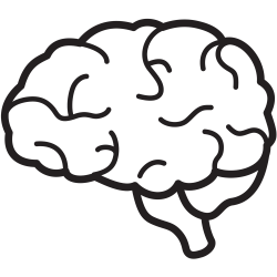 Brains clipart simple
