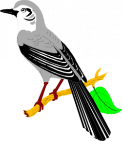 Finch clipart bird png