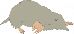 Vole clipart dead