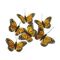 Monarch Butterfly clipart swarm