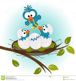 Bird's Nest clipart baby bird
