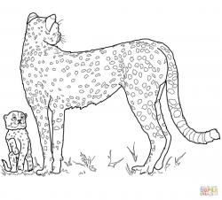 Cheetah clipart outline